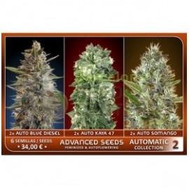 Automatic Collection 2 (6 semillas)