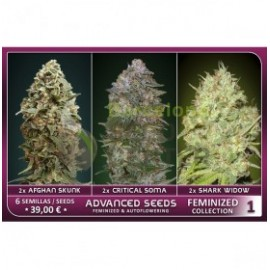 Feminized Collection 1 de Advanced Seeds