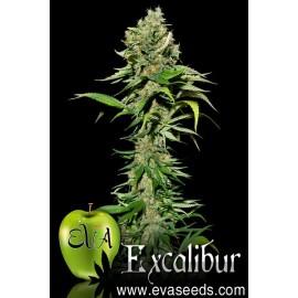 Semillas de cánnabis Excalibur