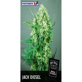 Semillas Jack Diesel de Positronics