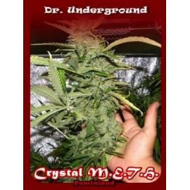Crystal Meth de Dr Underground