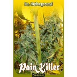 Semillas de marihuana medicinal Painkiller