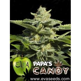Papa's Candy