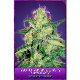 Auto Amnesia