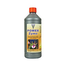 Power Zyme de Hesi
