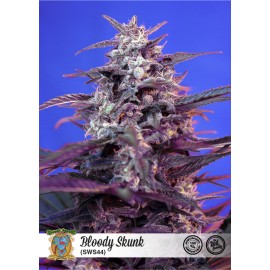 Blody Skunk Auto de Sweet Seeds