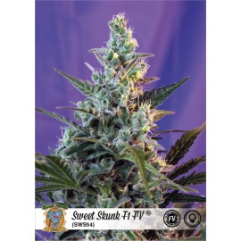 Sweet Skunk Fast Version