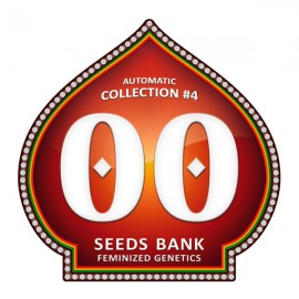Automatic Collection 4 de 00 Seeds