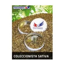 Pack Coleccionista Sativa (6 llavors)