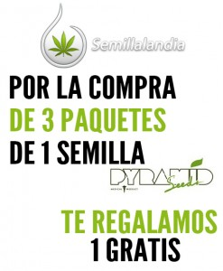 5 gratis Semillas de marihuana