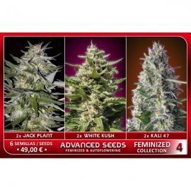 Feminized Collection 4 (6 semillas)