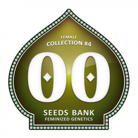 Female Collection 4 de 00 Seeds
