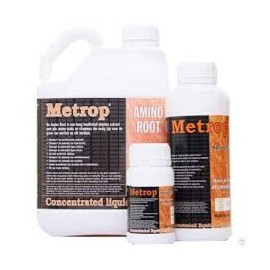 Root + de Metrop