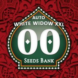 Auto White Widow XXL