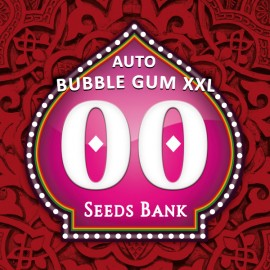 Auto Bubble Gum XXL