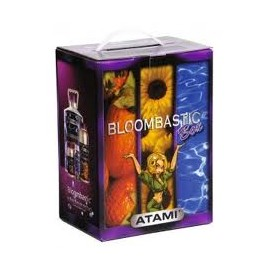 kit Bloombastic Box Terra